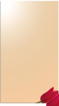 Oglinda bronz