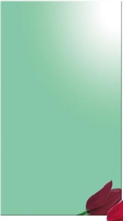 Oglinda verde